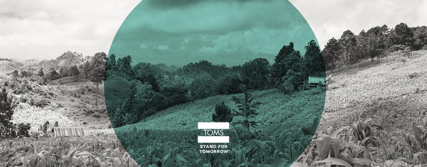 TOMS_Environmental_Impact_1-sustainability-TOMS-desktop-min
